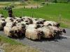 Passage devant le site de la Pastorale : ça discute ferme !